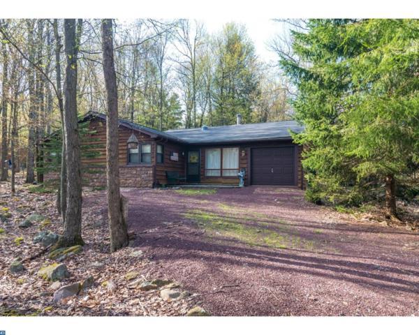 80 Greenwood Road, Lake Harmony, PA 18624 (#7183005) :: Erik Hoferer & Associates