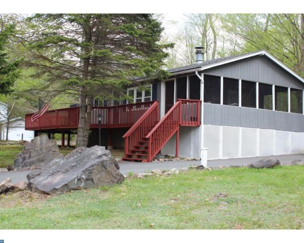 168 Tenicum Trail, Pocono Lake, PA 18347 (#7184350) :: REMAX Horizons