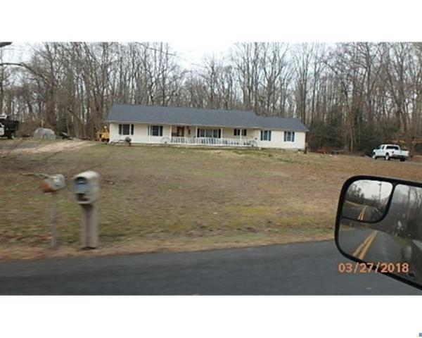1070 Black Diamond Road, Smyrna, DE 19977 (#7186225) :: The Team Sordelet Realty Group