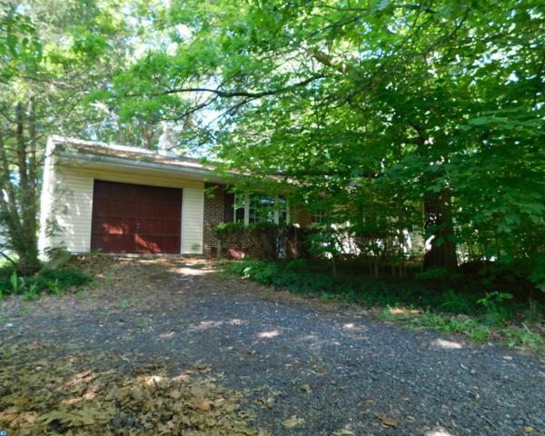 4222 Anita Drive, Collegeville, PA 19426 (#7187409) :: REMAX Horizons