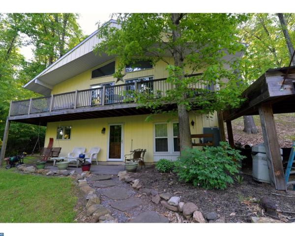 1262 Squaw Drive, Auburn, PA 17922 (#7187921) :: Erik Hoferer & Associates
