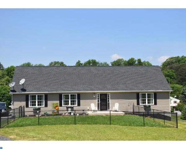 1665 Wampum Drive, Auburn, PA 17922 (#7189701) :: Erik Hoferer & Associates
