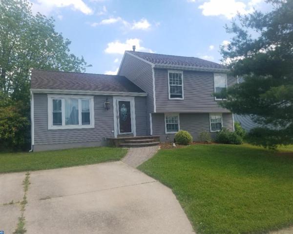 414 Lorne Court, Williamstown, NJ 08094 (MLS #7194290) :: The Dekanski Home Selling Team