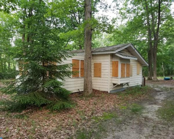 415 Snow Avenue, Browns Mills, NJ 08015 (MLS #7194442) :: The Dekanski Home Selling Team