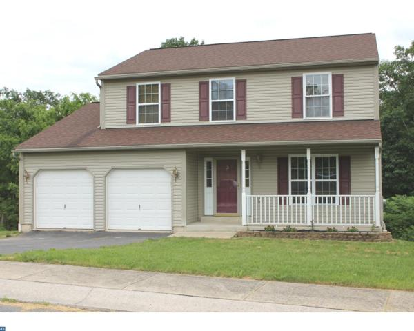3 Ridge Vista Drive, Pine Grove, PA 17963 (#7195769) :: Ramus Realty Group