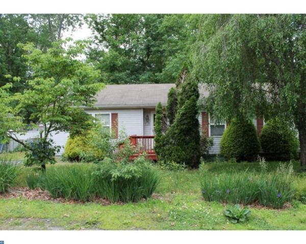 118 Phillips Avenue, Pemberton, NJ 08015 (MLS #7196058) :: The Dekanski Home Selling Team