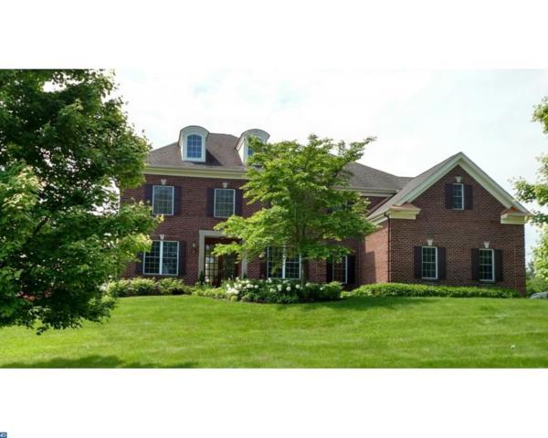 703 Foxtail Court, New Hope, PA 18938 (#7196098) :: Erik Hoferer & Associates