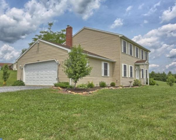 3 Swissdale Road, Bernville, PA 19506 (#7198254) :: Ramus Realty Group
