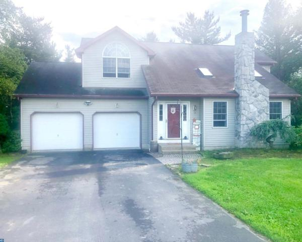 10 Hipple Lane, Bernville, PA 19506 (#7198284) :: Ramus Realty Group