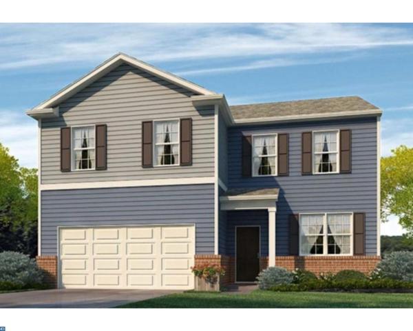 148 N Marshview Terrace, Magnolia, DE 19962 (#7198544) :: Erik Hoferer & Associates