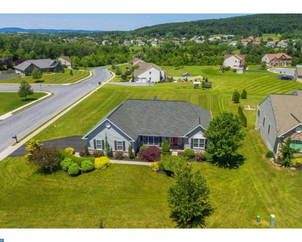 301 Pleasant View Drive, Douglassville, PA 19518 (#7199676) :: REMAX Horizons
