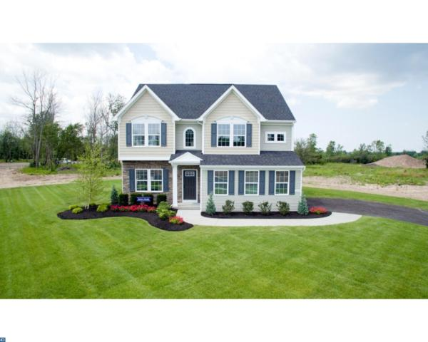 1255 Anderlea Drive, Romansville, PA 19320 (#7202790) :: Ramus Realty Group