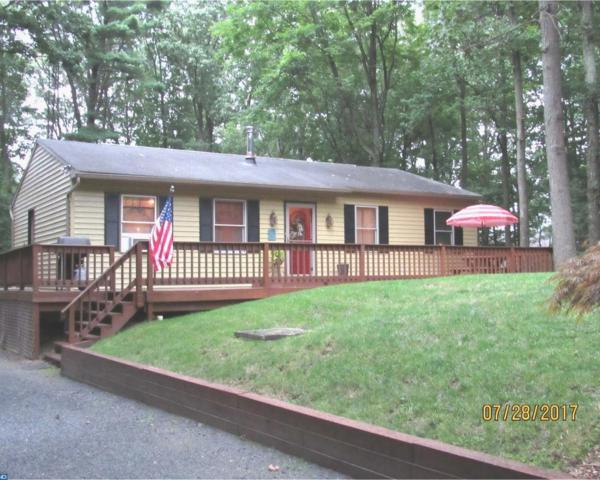 2586 Wagonwheel Drive, Auburn, PA 17922 (#7203723) :: Ramus Realty Group