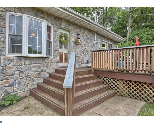 442 Green Tree Drive, Auburn, PA 17922 (#7203868) :: Ramus Realty Group