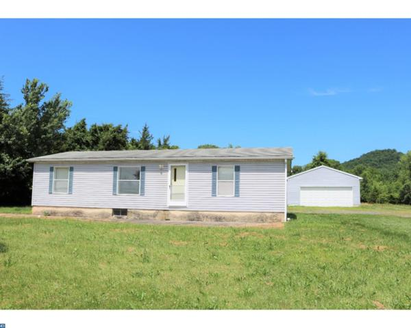 119 Monocacy Creek Road, Birdsboro, PA 19508 (#7204582) :: Ramus Realty Group