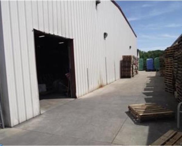 300 Bushkill Street, Tatamy, PA 18040 (#7208076) :: Daunno Realty Services, LLC