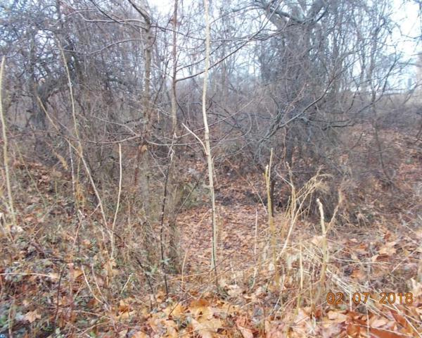 1587 Commissioners Road, Mullica Hill, NJ 08062 (#7210004) :: Remax Preferred | Scott Kompa Group