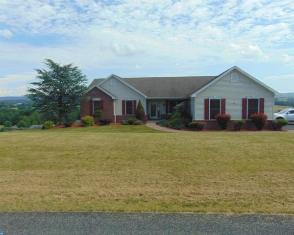 132 Rolling View Drive, Schuylkill Haven, PA 17972 (#7212509) :: Ramus Realty Group