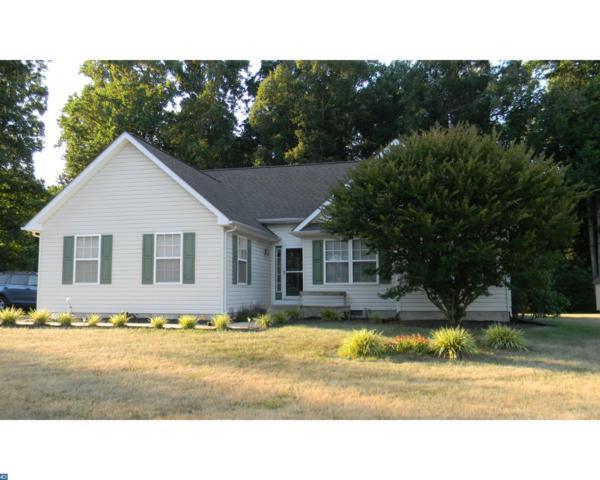21 Shadywood Lane, Magnolia, DE 19962 (#7214941) :: REMAX Horizons