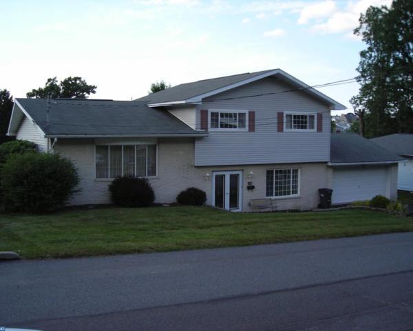 517 W Nicholas Street, Frackville, PA 17931 (#7217341) :: Ramus Realty Group