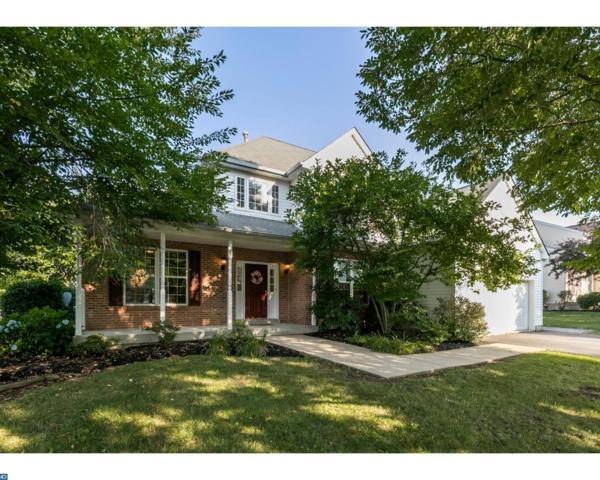 25 Meadow Drive, Gilbertsville, PA 19525 (#7218740) :: REMAX Horizons