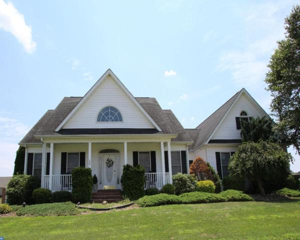 114 Lucky C Drive, Harrington, DE 19952 (#7219010) :: REMAX Horizons