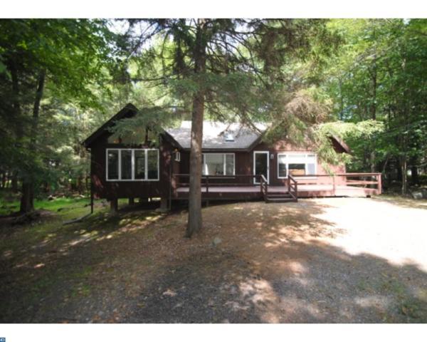 111 Buffalo Trail, Pocono Lake, PA 18347 (#7219959) :: The John Collins Team