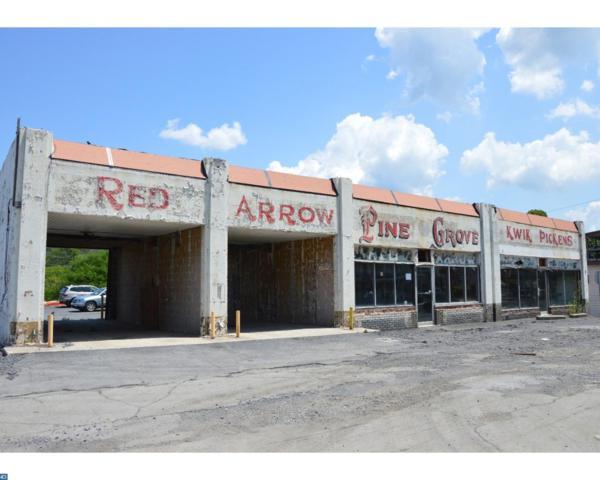 121 N Tulpehocken Street, Pine Grove, PA 17963 (#7229478) :: Ramus Realty Group