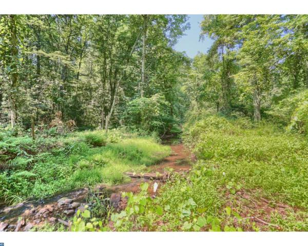 904 Buck Hollow Road, Mohnton, PA 19540 (#7230688) :: The John Collins Team