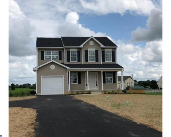 336 Cobbs Mill Road, Alloway, NJ 08302 (MLS #7234465) :: The Dekanski Home Selling Team