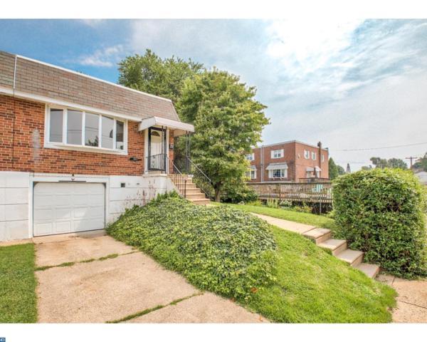 3895 Fairdale Road, Philadelphia, PA 19154 (#7236194) :: Daunno Realty Services, LLC