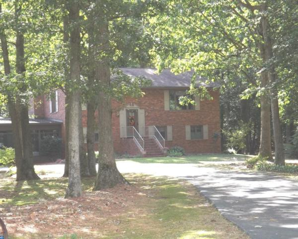 3380 Nine Foot Road, Greenwood, DE 19950 (#7236308) :: RE/MAX Coast and Country