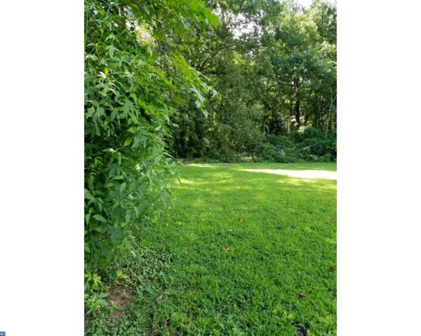 20 Acre Greentop Road, Lincoln, DE 19960 (#7237431) :: RE/MAX Coast and Country