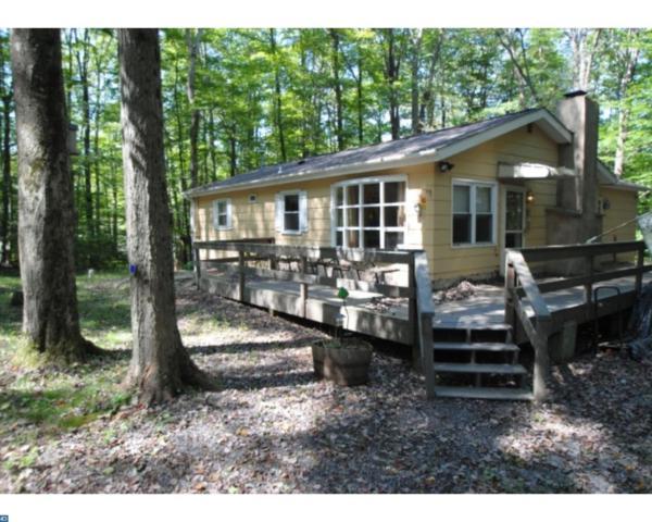 117 Comanche Trail, Pocono Lake, PA 18347 (#7241833) :: The John Collins Team