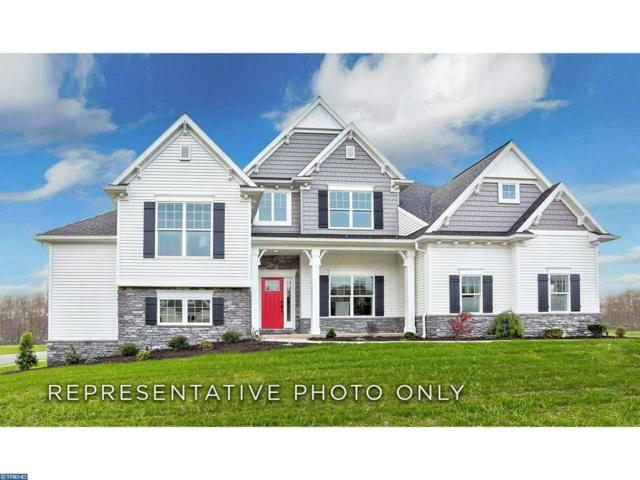 904 Buck Hollow Road, Mohnton, PA 19540 (#7243896) :: The John Collins Team
