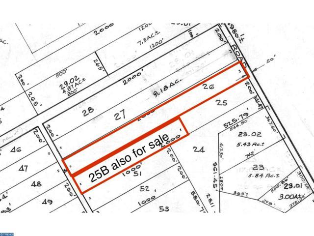 L:26 Sooy Place Road, Shamong Twp, NJ 08088 (#7249795) :: The John Wuertz Team