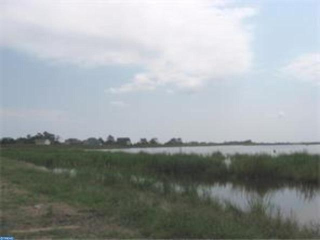 9201 Shore Drive, Milford, DE 19963 (#7250242) :: REMAX Horizons