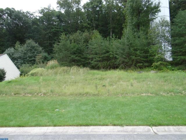 0 Fern Road, Orwigsburg, PA 17961 (#7250921) :: Ramus Realty Group