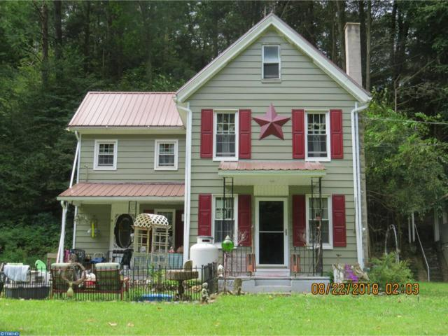 132 Geary Wolfe Road, Pine Grove, PA 17963 (#7251538) :: Ramus Realty Group