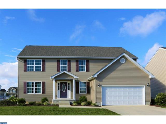 266 S Marshview Terrace, Magnolia, DE 19962 (#7252315) :: REMAX Horizons