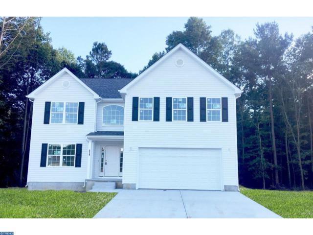 294 Quaker Hill Road, Magnolia, DE 19962 (#7253472) :: REMAX Horizons