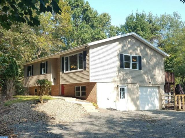 138 Beechwood Drive, Birdsboro, PA 19508 (#7253497) :: Ramus Realty Group
