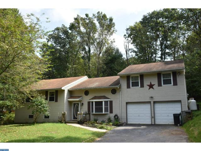 2444 Running Bear Cove, Auburn, PA 17922 (#7254489) :: Ramus Realty Group