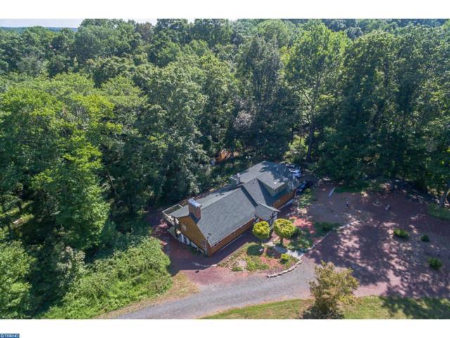 76 Bowne Station Road, Ringoes, NJ 08559 (MLS #7255609) :: Jason Freeby Group at Keller Williams Real Estate