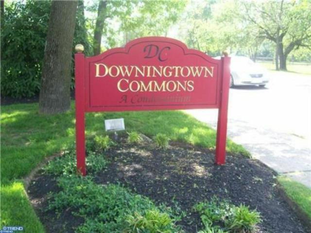 335 E Lancaster Avenue D25, Downingtown, PA 19335 (#7255855) :: The Kirk Simmon Team