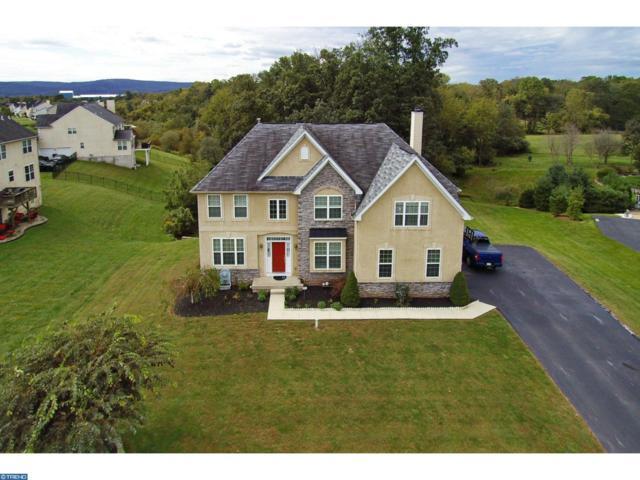 5102 Peach Blossom Drive, Douglassville, PA 19518 (#7255895) :: Ramus Realty Group