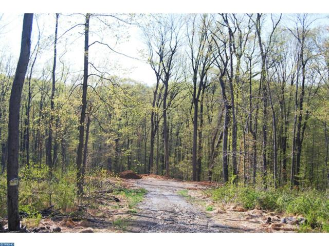 Lot 8 Weidner Way, Chester Springs, PA 19425 (#7256003) :: The Kirk Simmon Team
