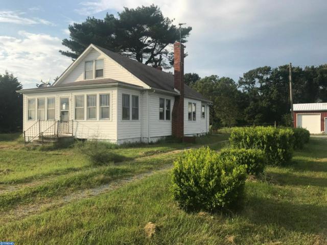 4257 Spectrum Farms Road, Felton, DE 19943 (#7256126) :: REMAX Horizons