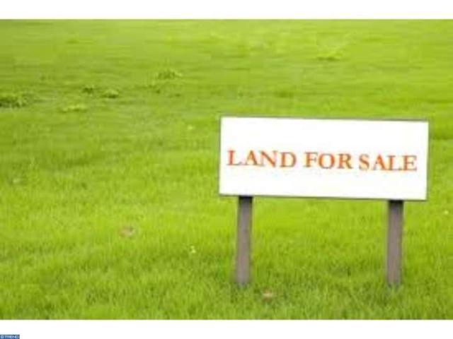 335 Johnson Avenue, Ewing Twp, NJ 08648 (MLS #6694300) :: The Dekanski Home Selling Team