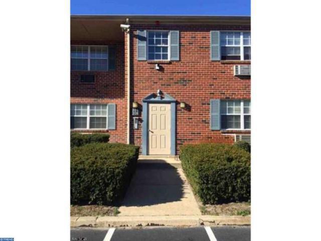 5303 Harding Highway #206, Mays Landing, NJ 08330 (MLS #6844240) :: The Dekanski Home Selling Team